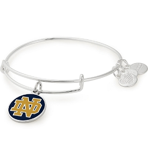 University of Notre Dame Logo Color Infusion Charm Bangle Silver