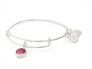 October Rose Birth Month Charm Bangle With Swarovski Crystal Silver