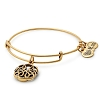 Path of Life Infinity Bangle Rafaelian Gold