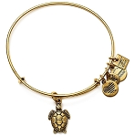 Sea Turtle Charm Bangle Rafaelian Gold