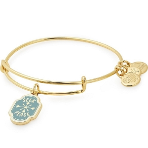 Seek Peace Charm Bangle Shiny Gold