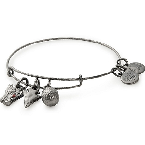 Game of Thrones Targaryen Charm Bangle Midnight Silver Finish