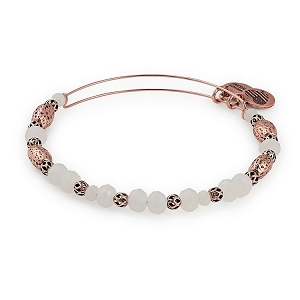 Birch Valley Beaded Bangle Rose Gold