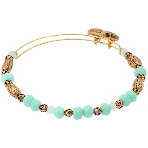 Robin Valley Beaded Bangle Gold