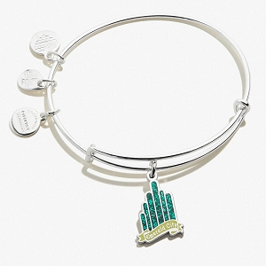 Wizard of Oz Emerald City Charm Bangle Shiny Silver