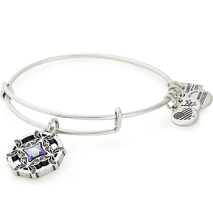 Wings of Change Charm Bangle American Cancer Society Silver