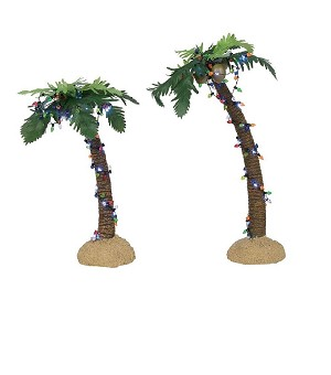 Lit Palm Trees 6003839