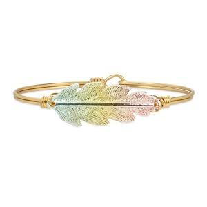 Lucky Feather Bangle Bracelet in Rainbow